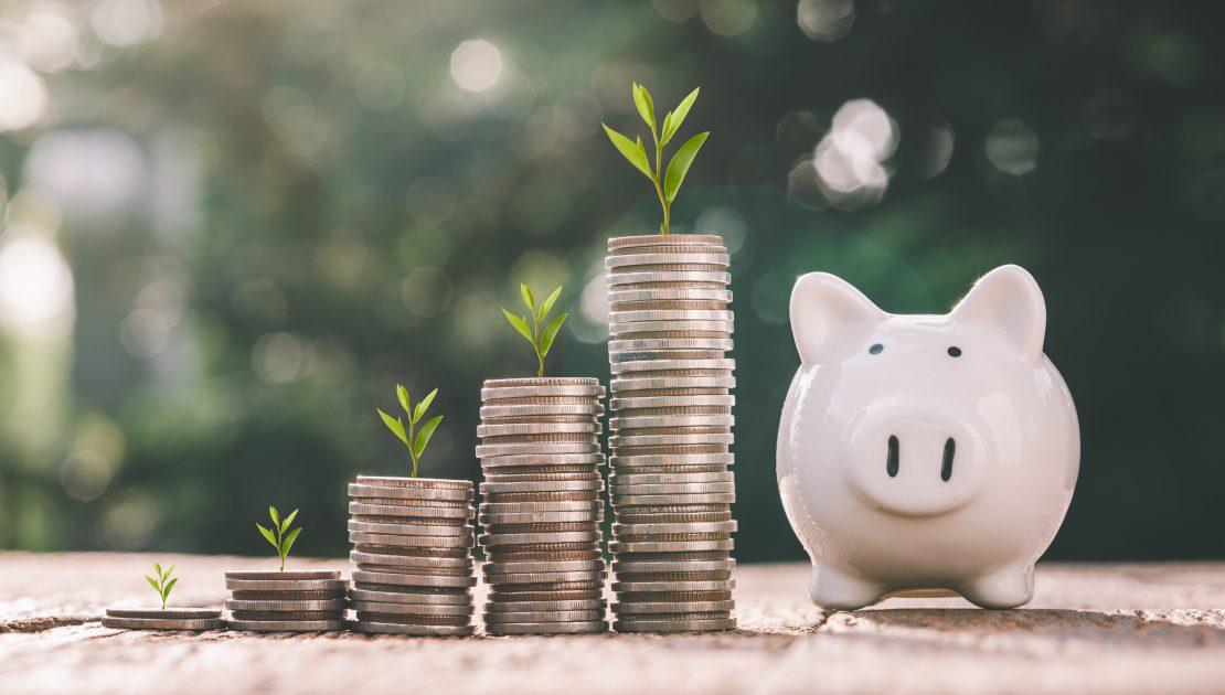 savings_pig
